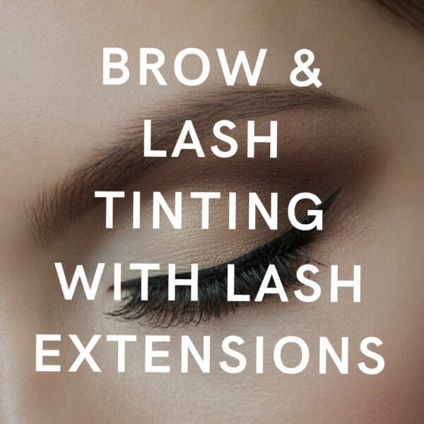 brow & lash tinting with lash extensions course