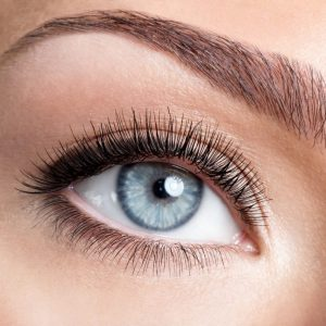 lash and brow treatment courses